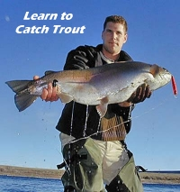 How to catch fish at lake mead and mohave for Lake mohave fishing report